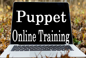 Puppet Online Training in Hyderabad India