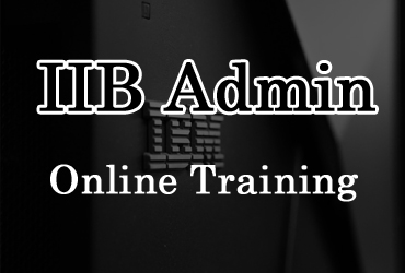 IIB Admin online training in Hyderabad India