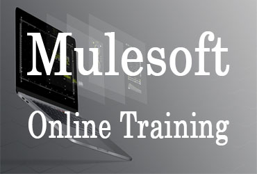 Mulesoft Online Training in Hyderabad India