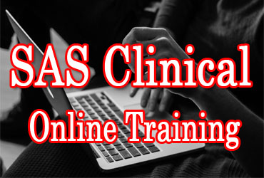 SAS Clinical Online Training in Hyderabad India